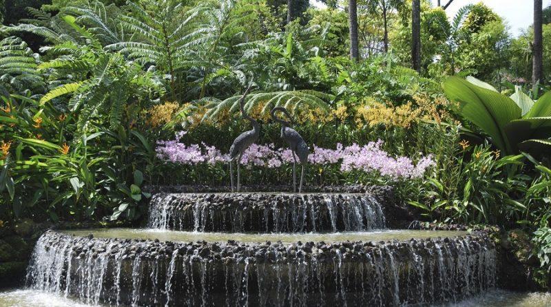 عناصر تنسيق الموقع والحدائق