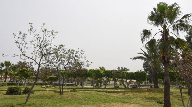 مسابقة تطوير الحديقة الدولية بالاسكندرية
